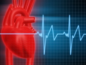 Researchers have found a possible link between oral bacteria and heart disease.