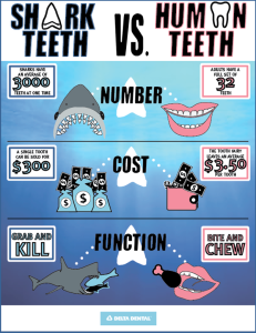 Most sharks have 5 rows of teeth, and can have as many as 3,000 teeth at once