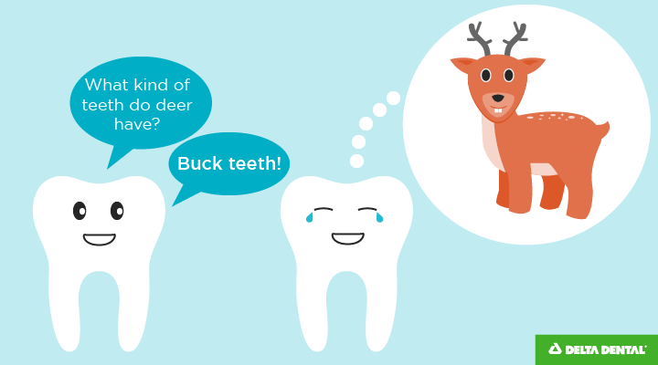 What kind of teeth do deer have? Buck teeth!
